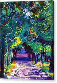 French Country Road Acrylic Print by David Lloyd Glover
