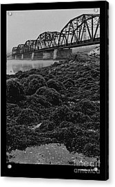 Frenchmans Bay Rr Bridge Acrylic Print