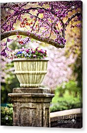 Acrylic Print featuring the photograph Fresh As Springtime by Cheryl Davis