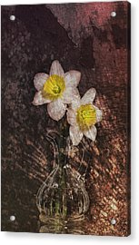 Fresh Cut Acrylic Print by Peter Chilelli
