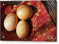 Fresh Eggs Acrylic Print by Denise Pohl