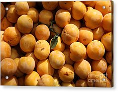 Fresh Yellow Plums - 5d17814 Acrylic Print by Wingsdomain Art and Photography