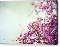 Friday Morning Acrylic Print by Violet Gray