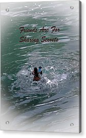Friends Are For Sharing Secrets Acrylic Print by DigiArt Diaries by Vicky B Fuller