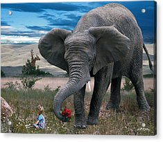 Friends Acrylic Print by Bill Stephens