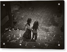Friends Acrylic Print by Tom Bell