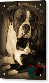 Friendship Is The Greatest Gift Of All Greeting Acrylic Print by DigiArt Diaries by Vicky B Fuller
