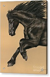 Acrylic Print featuring the painting Friesian Portrait by Sheri Gordon