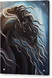 Friesian Storm Acrylic Print by Leni Tarleton