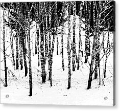 Frigid White Acrylic Print