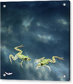 Frogs Acrylic Print by Christiana Stawski