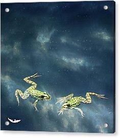 Frogs Acrylic Print