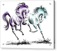 Acrylic Print featuring the drawing Frolicking - Wild Horses Print Color Tinted by Kelli Swan