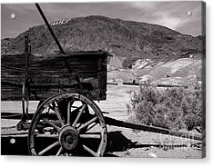 From The Good Old Days Acrylic Print by Susanne Van Hulst