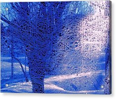 Acrylic Print featuring the photograph Frost Etching by Joan Hartenstein