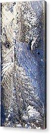 Frost Owl Acrylic Print by Greta Thorsdottir