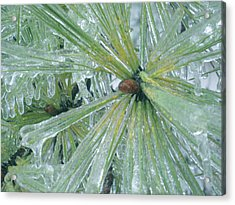 Frozen Assets Acrylic Print by Linda Pope