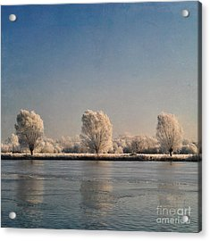 Frozen Lake Acrylic Print by Lyn Randle