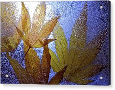 Acrylic Print featuring the photograph Frozen Leaves by Scott Holmes