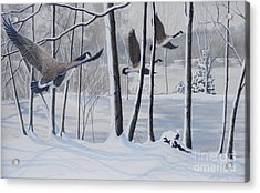Frozen Over  Sold Prints Available Acrylic Print