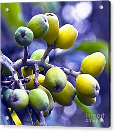 Acrylic Print featuring the photograph Sicilian Fruits by Silva Wischeropp