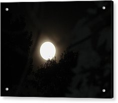 Acrylic Print featuring the photograph Full Moon Beauty by Ester  Rogers