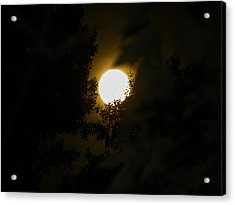 Full Moon Acrylic Print by Ester  Rogers