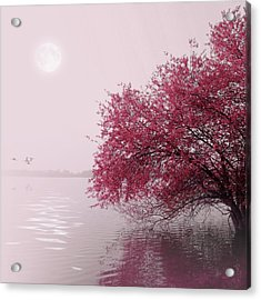 Full Moon On The Lake Acrylic Print by Philippe Sainte-Laudy Photography