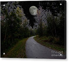 Full Moon Over Forest Trail Acrylic Print by Cedric Hampton