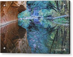 Fully Reflected Acrylic Print by Heather Kirk