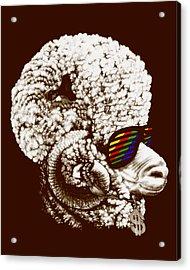 Funky Sheep Acrylic Print by Bojan Bundalo