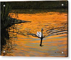Furnace Brook Resident Acrylic Print