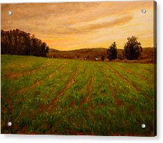 Furrowed Field Acrylic Print