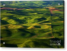 Furrows And Folds Acrylic Print by Mike  Dawson