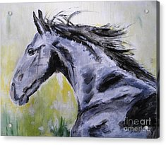 Acrylic Print featuring the painting Fury by Judy Kay