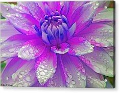 Fusia Flower Acrylic Print by Tyra  OBryant