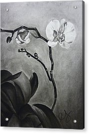 Galen's Orchid Acrylic Print