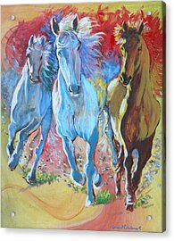 Galloping On Acrylic Print by Tomas OMaoldomhnaigh