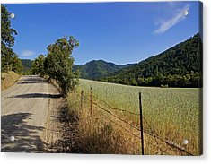 Galls Creek Road In Southern Oregon Acrylic Print by Mick Anderson