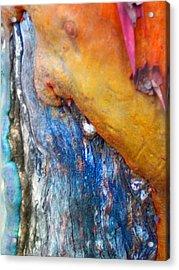 Acrylic Print featuring the digital art Ganesh by Richard Laeton