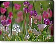 Garden Acrylic Print by Billie-Jo Miller