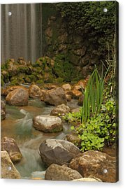Acrylic Print featuring the photograph Garden Falls by Coby Cooper