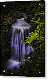 Acrylic Print featuring the photograph Garden Falls by Lynne Jenkins
