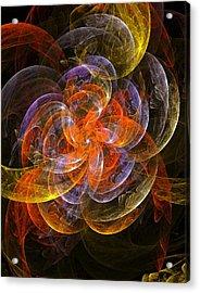 Garden Flowers Acrylic Print by Steve K
