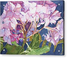 Garden Jewels Acrylic Print