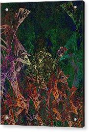 Garden Of Color Acrylic Print by Christopher Gaston
