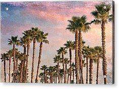 Garden Of Palms Acrylic Print by Stephen Warren