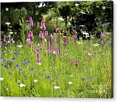 Garden On Bergey Road Acrylic Print