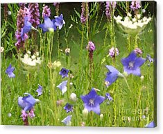 Garden On Bergey Road Detail Acrylic Print