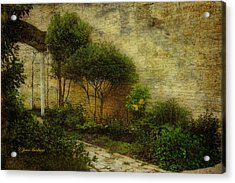 Acrylic Print featuring the photograph Garden Walk by Joan Bertucci